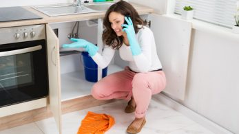 Should I DIY or Call a Professional Plumber?