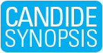 Candide Synopsis